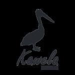 kawela swimwear